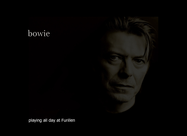 bowie a