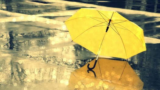 Yellow-Umbrella-Wallpaper-High-Resolution-Stock-Images-532
