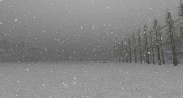 furillen in fog_006