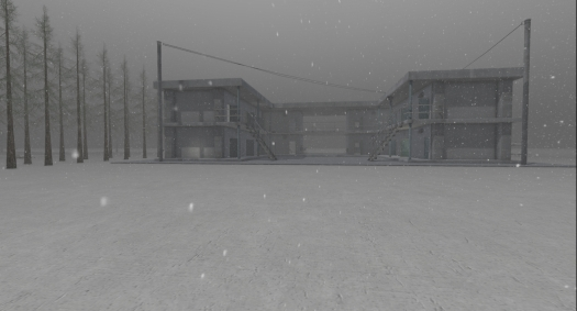 furillen in fog_007