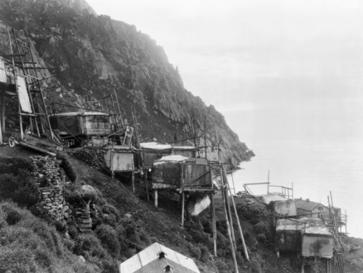 ALASKA: KING ISLAND. A view of the sea cliff dwellings in the village of Ukivok